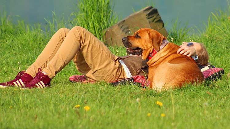 Urluab mit Hund in Boltenhagen