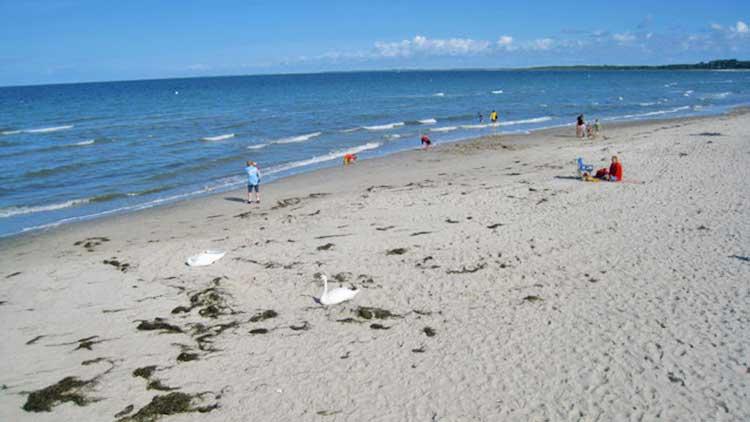 Am Strand in Boltenhagen